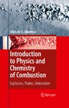 Liberman M. — Introduction to Physics and Chemistry of Combustion