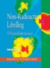Garman A. — Non-Radioactive Labelling: A Practical Introduction (Biological Techniques Series)