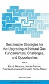 Derouane E.G., Parmon V., Lemos F. — Sustainable Strategies for the Upgrading of Natural Gas: Fundamentals, Challenges, and Opportunities