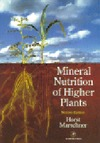 Marschner P. — Marschner's Mineral Nutrition of Higher Plants, Second Edition