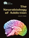 J. D. Stoehr — The Neurobiology of Addiction