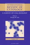 Jeon K. — International Review of Cytology, Volume 167