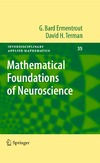 Ermentrout G., Terman D. — Mathematical foundations of neuroscience