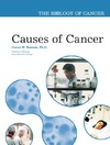 Donna M. Bozzone — Causes of Cancer (The Biology of Cancer)
