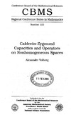 Volberg A. — Calderon — Zygmund Capacities and Operators on Nonhomogeneous Spaces